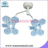 Double Head LED Surgical Lamp