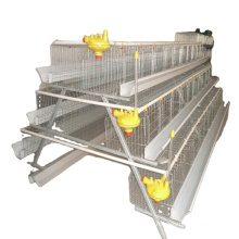 Hot sale chicken cage /A type chicken cage for farm