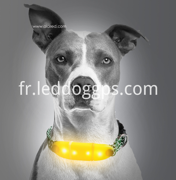 Silicone Lighted-Up Dog Collar