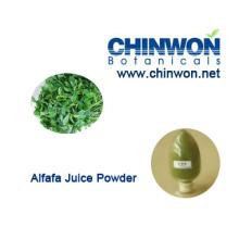 98% хорошо растворяется в воде Alfafa Juice Powder