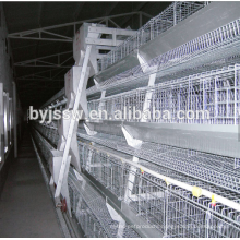 Ethiopia Layer Chicken Farm Poultry Equipment For Sale