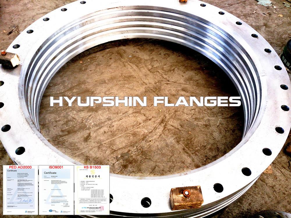 Hyupshin Flanges Lapped Loose Pn16