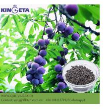 Plant Humic acid Biochar Compound Kunstmest