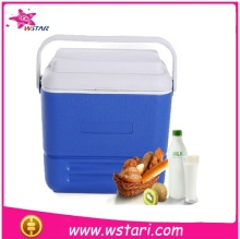New arrival disposable cooler bag for frozen food,lunch box