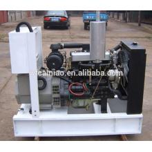 Venda quente 2110d ricardo 2 cilindro duplo cilindro 10kva preço do gerador