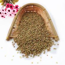 Non Canada Lentils Chinese Lentils top quality Green lentils
