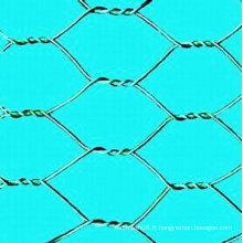 China Factory vend un treillis hexagonal galvanisé à chaud / trempé en PVC (fabricant)