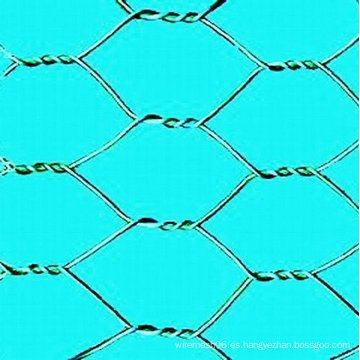 Fábrica de China vende caliente sumergido / PVC revestido de malla de alambre hexagonal galvanizado (fabricante)