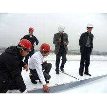 Draps pour la construction / Membrane imperméable à l'eau Tpo homogène
