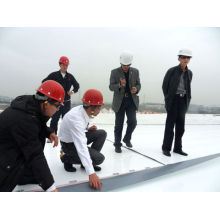 Sheets Roofing for Construction / Homogeneous Tpo Waterproof Membrane