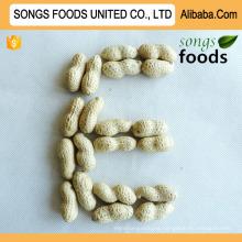 Count 9/11 11/13 Seaflower Peanut Sell