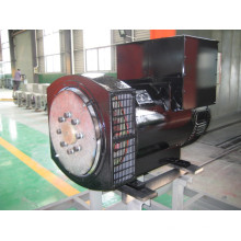 Трехфазный бесщеточный генератор переменного тока 250кВА (JDG314C)