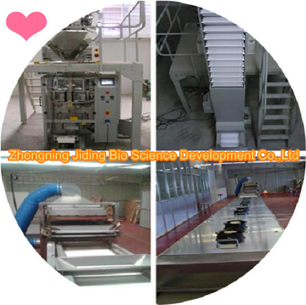 Goji berry process equipment