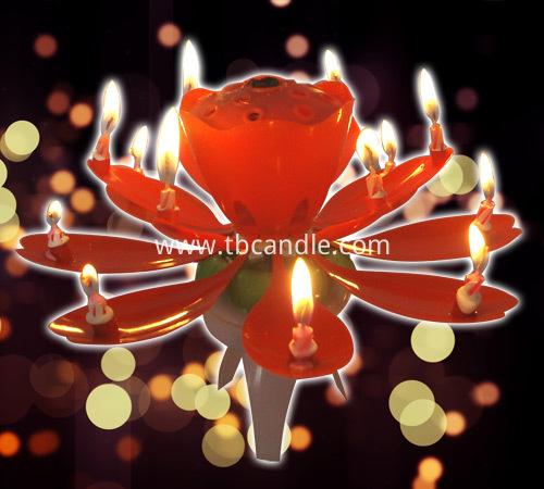 Chrysanthemum Music Candle