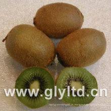 Fruta de quivi verde fresco de qualidade de exportação