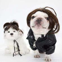 Disfraz para mascotas, maquillaje para mascotas, conjunto de pelucas para perros