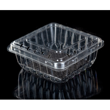 plastic clamshell packing box for blueberry