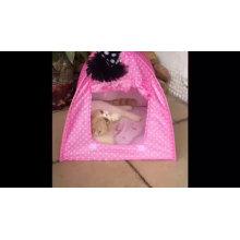 A casa interna impermeável dobrável do gato resistente estala acima a barraca do gato do animal de estimação