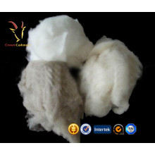 Pure Mongolian Cashmere Top Raw Sheep Wool For Sale
