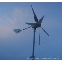 Utilisation résidentielle à la maison de générateur de turbine de vent du générateur 400W à basse vitesse de vent