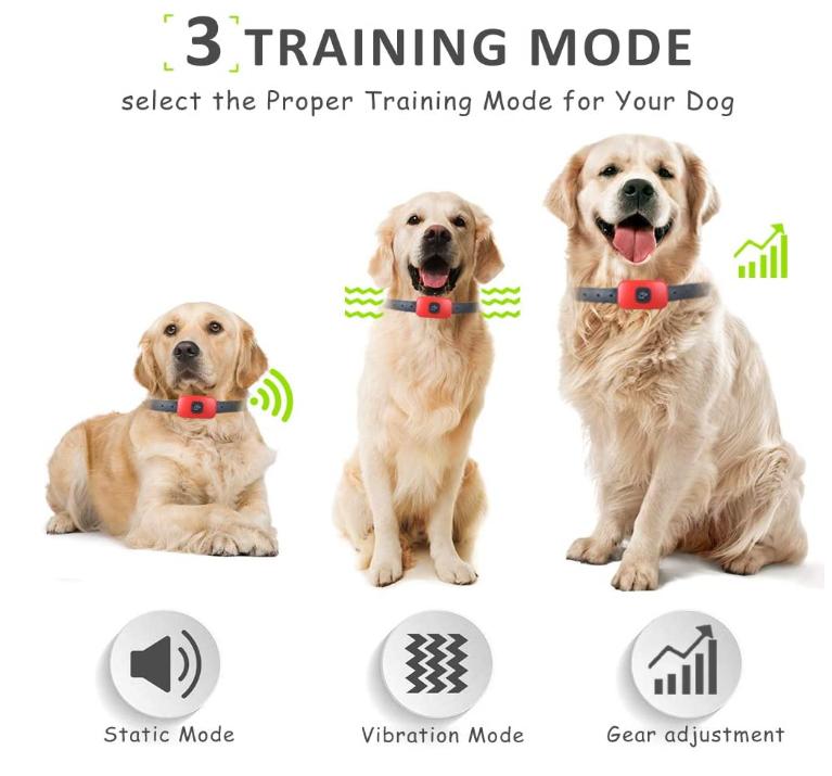 Puppy Training Shock Collar