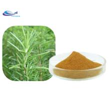 Extrait de romarin CAS3650-09-7 Acide carnosique