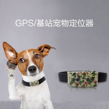 SIM 3G Cat Pet Dog GPS Tracker