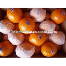 Mandarina fresca