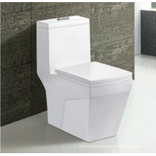 Bathroom Water Less Toilet Porcelain Sanitary Ware One Piece Water Closet