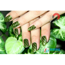 Magnet Rounded Rectangle oblique stripe nail polish