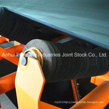 Conveyor System/Belt Conveyor/Impact Conveyor Roller
