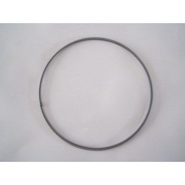 Professional maker of oil seal spring