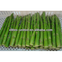 iqf frozen green asparagus