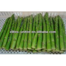 Iqf espargos verdes congelados