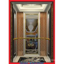 Stall & Standard Glas Passagier Aufzug Lift mit gutem Preis