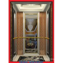 Stable & Standard Glass Passenger Elevator Lift avec bon prix