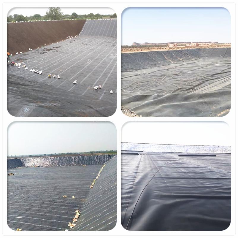 buy HDPE geomembrans for prawn farm