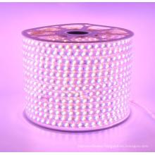 100m/roll waterproof led 220v strip lights