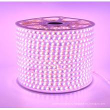 100 м/рулон 220 В водонепроницаемый светодиодные полосы света