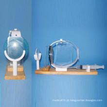 Modelo de Pressão Intraocular de Olho Humano para Ensino Médico (R060109)