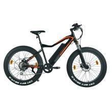 Bicicleta eléctrica híbrida XY-CHAMPION de 29 pulgadas