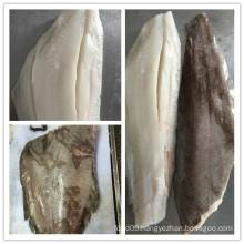 Arctic Ocean Southern Flounder Fish Fillet
