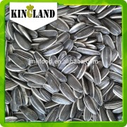 sunflower seeds in shell for export used to human consumption