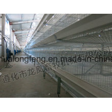 New Design of Broiler Cage