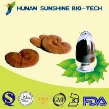 Meistverkaufte ProdukteReishi Pilz Extract Immune Booster Medikamente