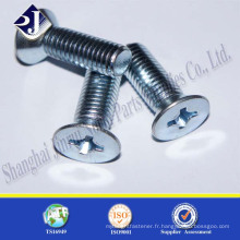 Alibaba Chine Fournisseur Vente chaude Flat Head Countersunk Screw