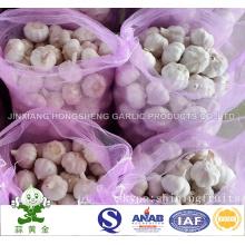 New Crop 2016 Chinese Normal White Garlic 10kgs Mesh Bag
