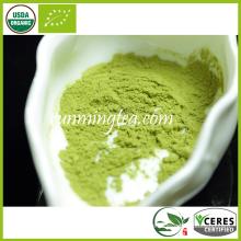 Grüner Tee Extraktion Polyphenole Pulver