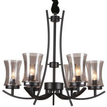 Black Iron Chandelier Lighting Interior Lamp (SL2246-6)