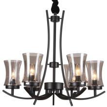 Lustre de ferro preto iluminação lâmpada interior (SL2246-6)